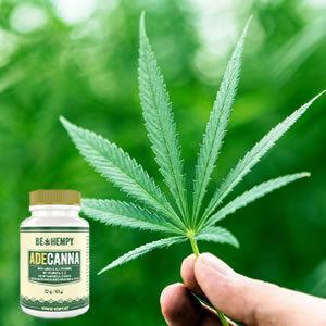 Nad slabo počutje s konopljinimi vršički in vitamini!