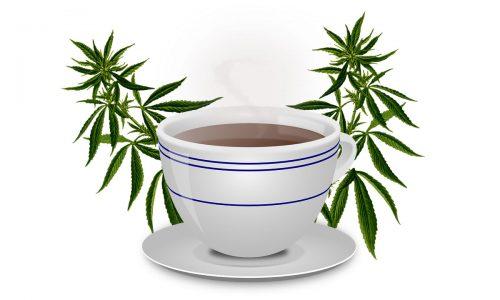 Konopljin čaj